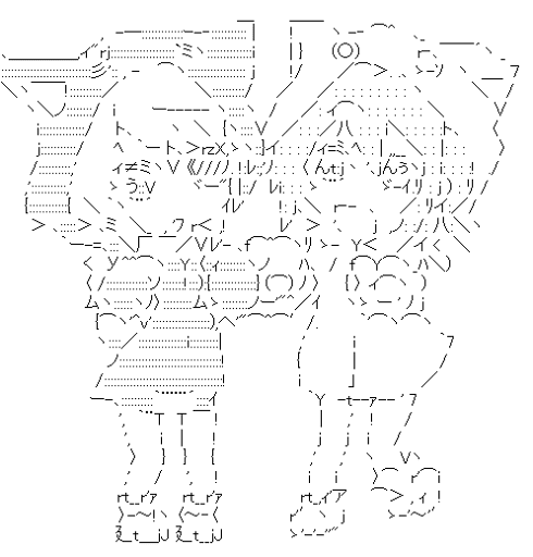 ラウラボーデヴィッヒ & シャルロットデュノア きぐるみ (インフィニット・ストラトス)