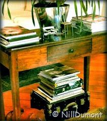 5-elementos-05-mesa-de-madeira-NillDumont
