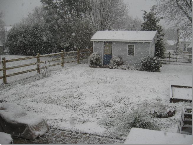 Snow 02 (6)
