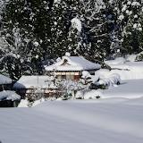 冬は、雪がたくさん降る地域と、あまり降らない地域がある。