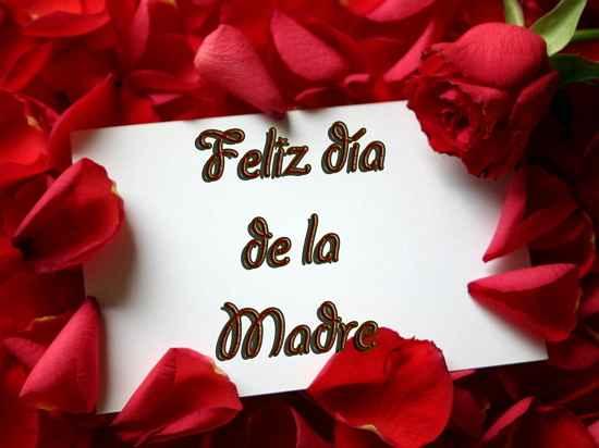 Feliz dia de la madre con rosas