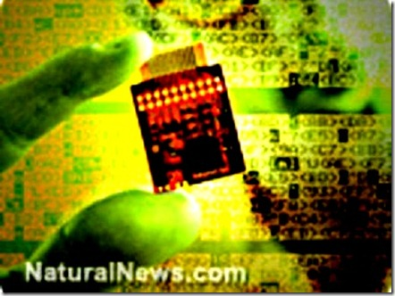 RFID Chip in Food