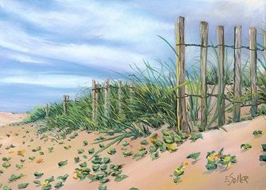 Beach-dunes-450