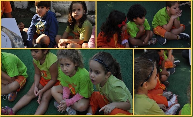 Infantil 4 Tarde - História no gramado4