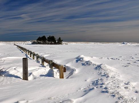 13. snowscape-gusto