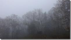螢幕截圖 2014-11-13 21.41.50