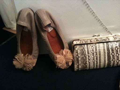 Love these Lanvin flats!