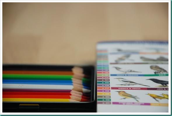 Pencils and birdbook