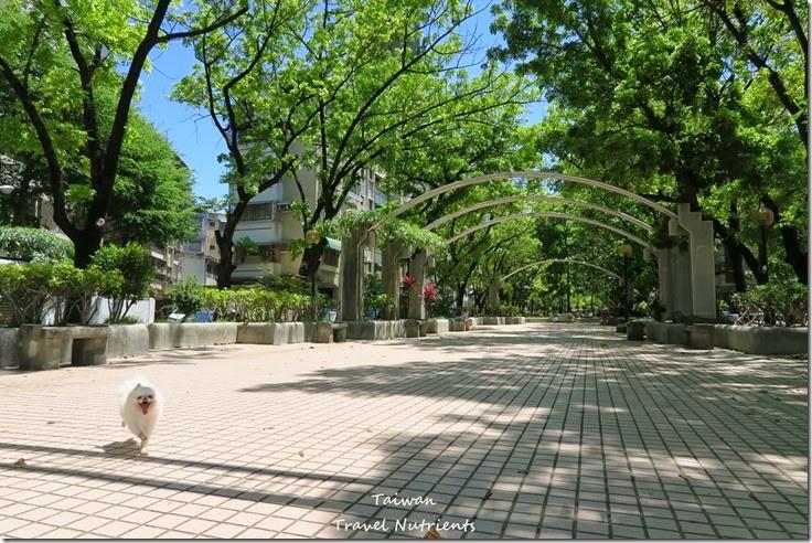 高雄Mona's Cafe, Mona House寵物友善餐廳,民宿 (2)
