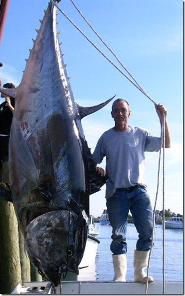 big-fish-fishing-20