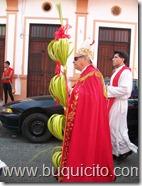 Domingo de Ramos 1 abril 2012 (3)