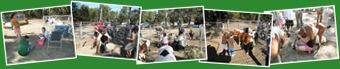 View 2011 Zion Lutheran Church Fall Fest Petting Zoo by Harmon PFarms