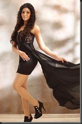 Tamil Actress Bhanu Hot Photo Shoot Stills