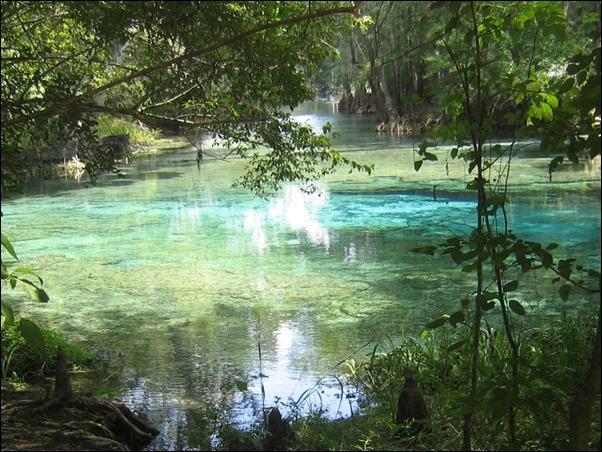 بحيرة فلوريدا