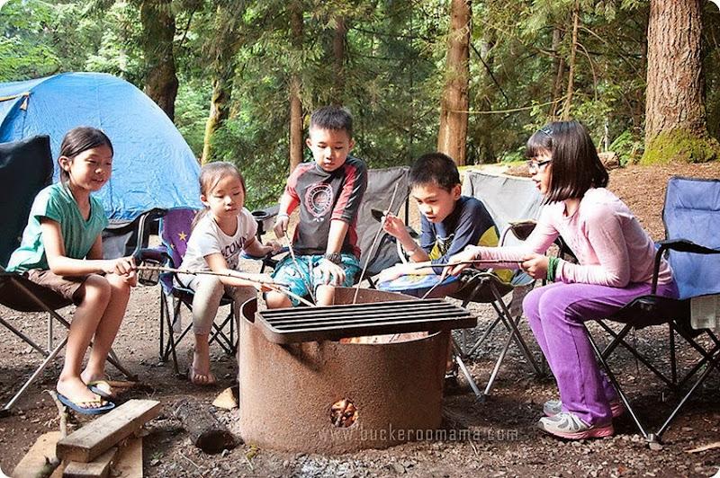Camp-fire-(1)