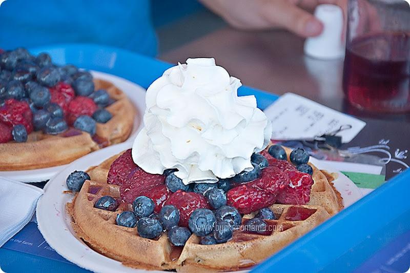 Berry-waffle-(3)