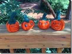 pumpkin patch runaways