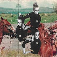 Arian Behzadi Collage.jpg