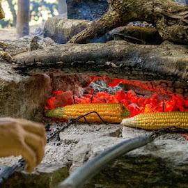 sweet corns by Hariprasad Bobhate - Food & Drink Cooking & Baking ( burning coal, sweet corns, roasting, street food, bhutan, fire )