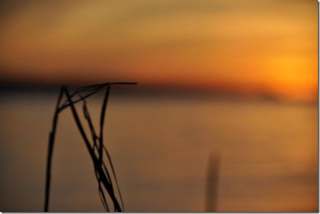 sunset november 19 218