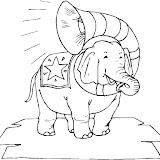 elefante-9.jpg
