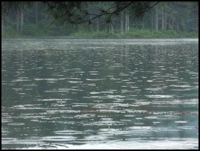 Lowell Lake #2 011 (19)