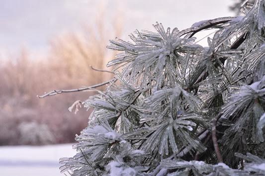 Ice_storm_3
