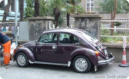 lovebugs 003