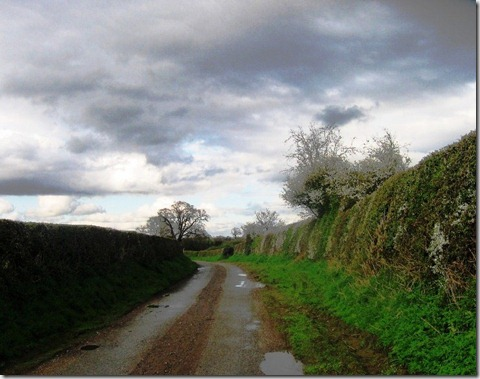rainwashed lane back to the boat Marbury