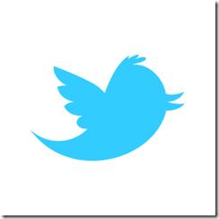 twitter_newbird_boxed_blueonwhite
