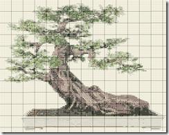 bonsai simboli 1