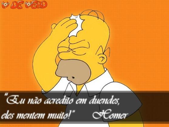 Frases Homer (3)
