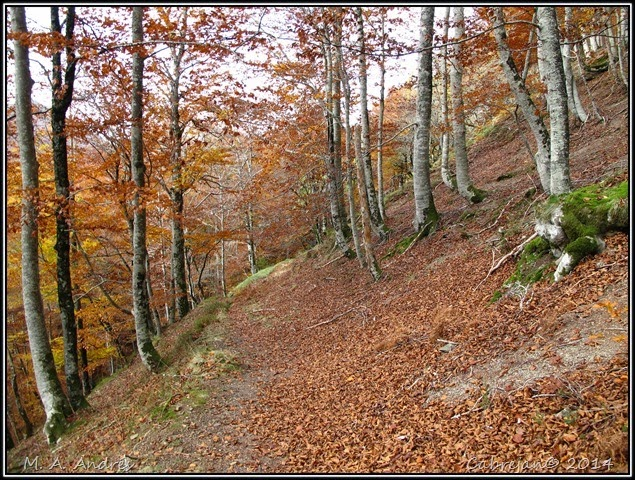 Lantz otoño 053