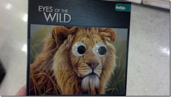 googly-eyes-funny-8