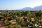 Фото 12 Hilton Nuweiba Coral Resort