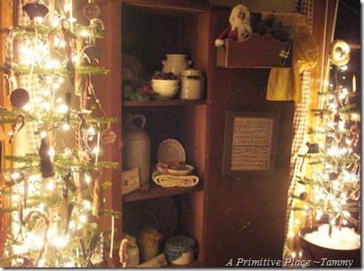 A Primitive Place ~Tammy