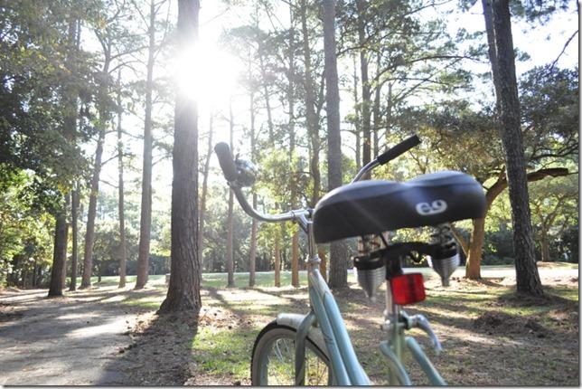 10-3011 bike  woods 260