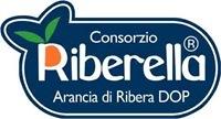 Bollino Riberella Arancia di Ribera DOP 3
