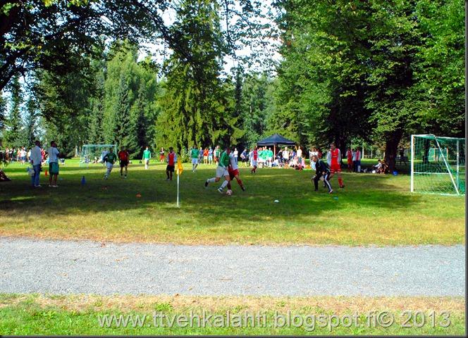 kirjurinluoto puisto potkupallo Marko ja heli maalareina 048