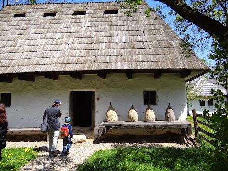 04. Muzeul Satului Branean - stupi.JPG