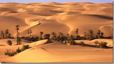 2824-1366x768-Desert-Oasis-Libya---1600x1200---ID-32980
