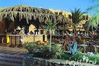 Фото 10 Iberotel Makadi Oasis Resort
