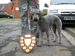 Alfie: Best of Breed 2011