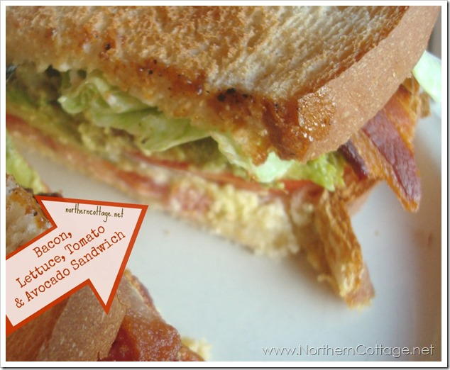 blt plus avocado sandwich - yum!  @ NorthernCottage.net