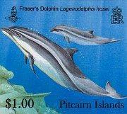 dolphins100c