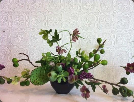 cactus 936371_556682797717035_1704704555_n passionflower
