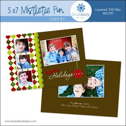 Mistletoe Card 1