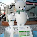 cute polar beers at muscle park in tokyo in Odaiba, Tokyo, Japan
