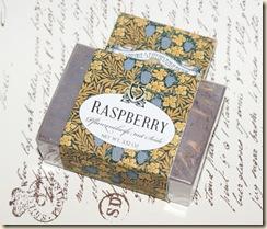 Raspberry4