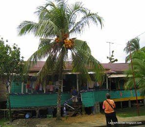 Typical Bocas home and coconuts
